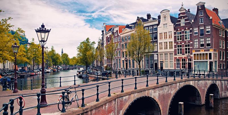 Professional-Internship-in-Amsterdam3