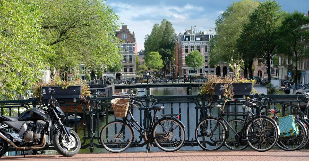Volunteering-in-Netherlands